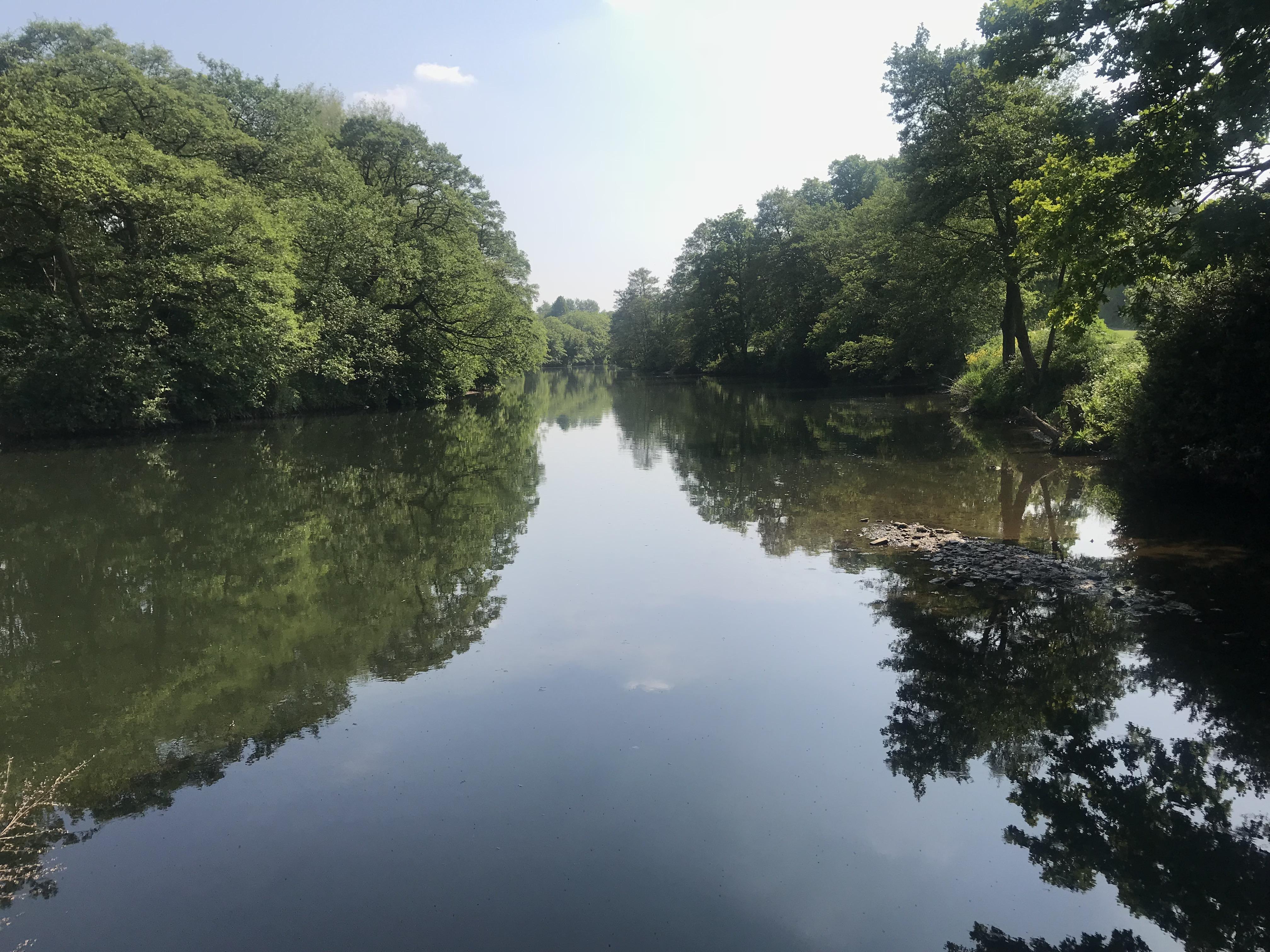 Divine Truth Hub - Darley Park
